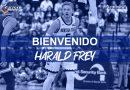 HARALD FREY SE CONVIERTE EN EL PRIMER FICHAJE DEL LIBERBANK OVIEDO BALONCESTO